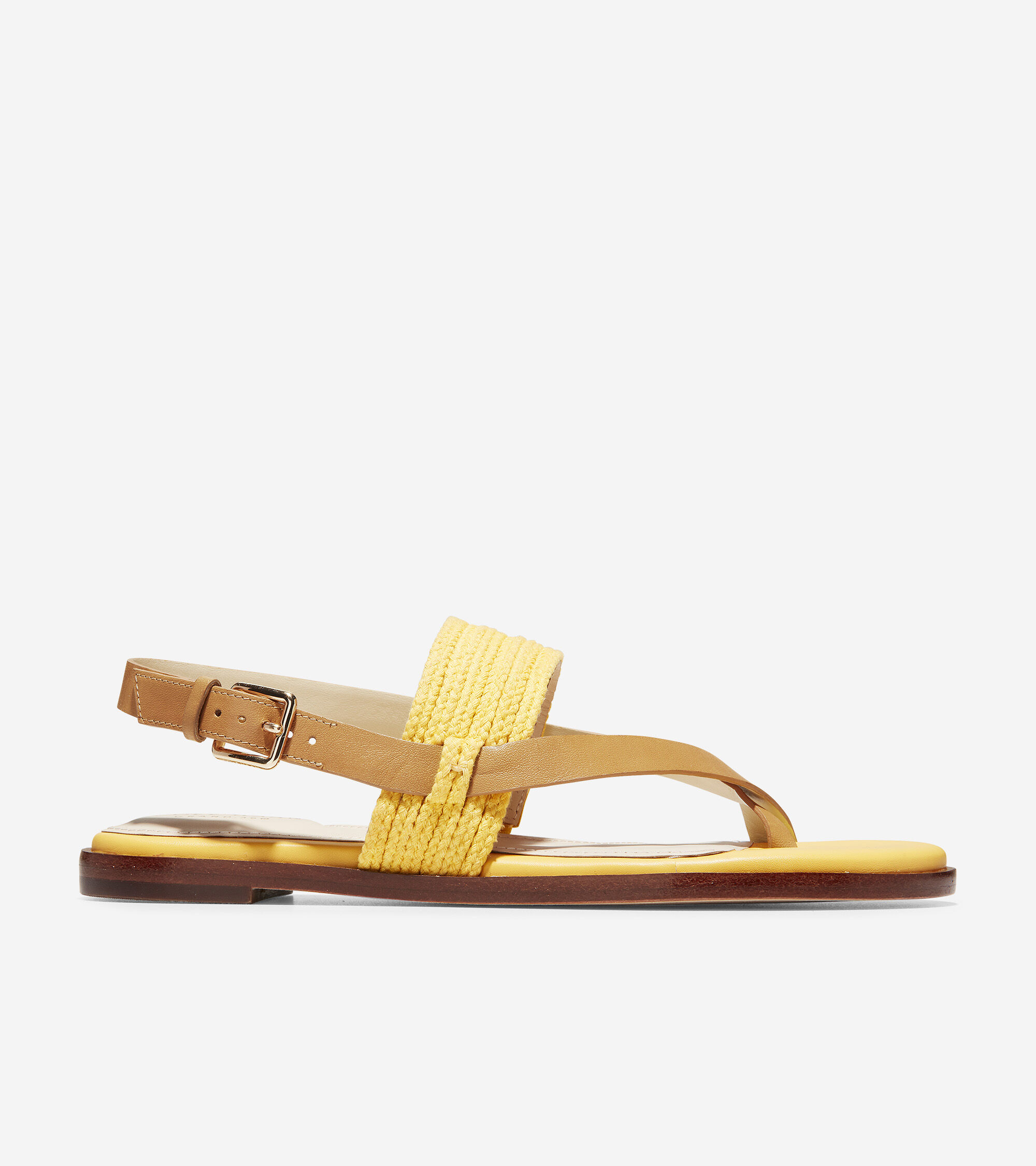 Women's Anica Thong Sandal in Bright