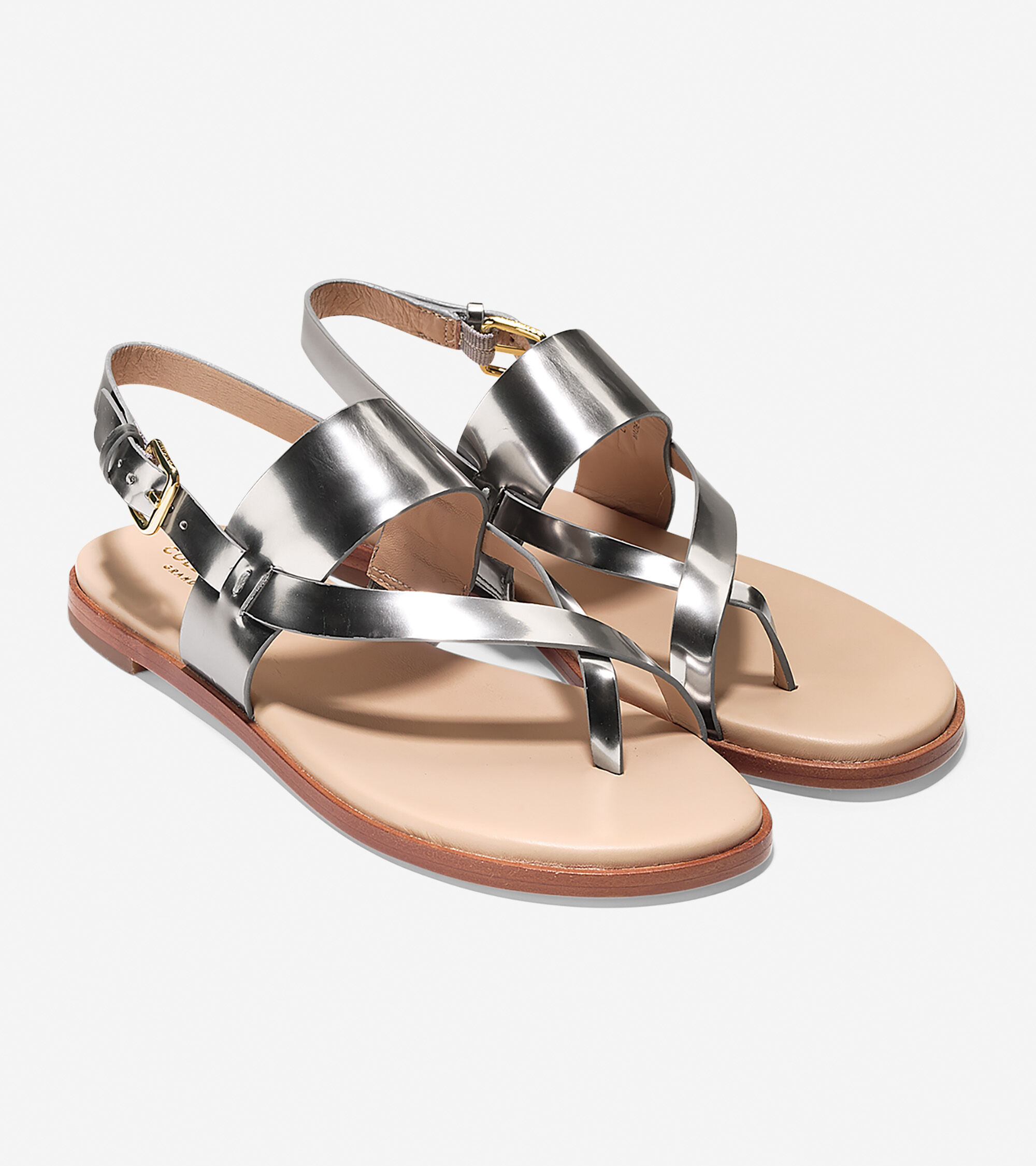d7bbe784bc18d Women s Anica Thong Sandals in Pewter Metallic