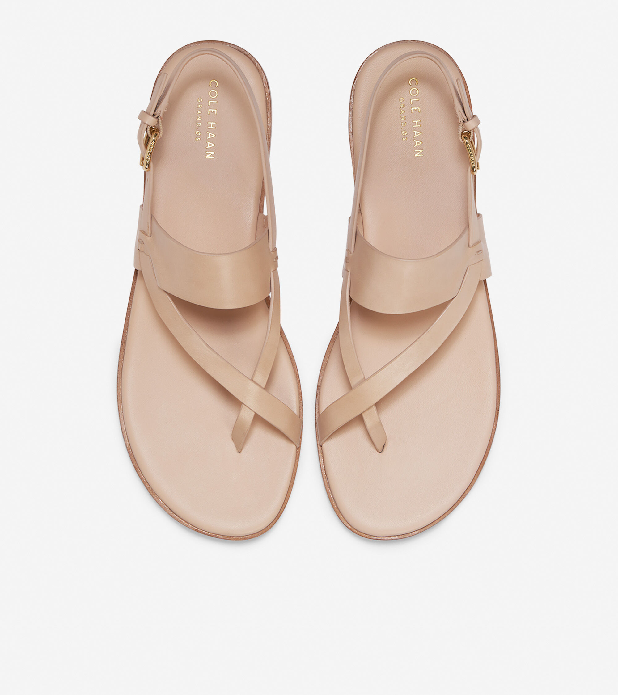 f8c2f962aa1 Women s Anica Thong Sandals in Nude Leather