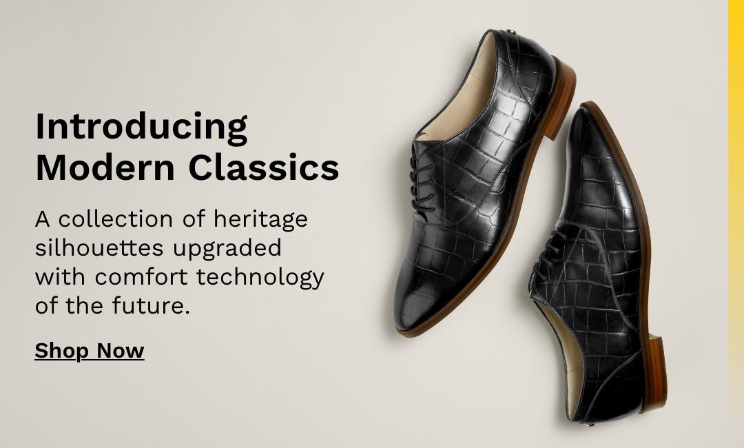 Introducing Modern Classics